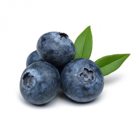 Heidelbeer Genuss kalorienreduziert bio