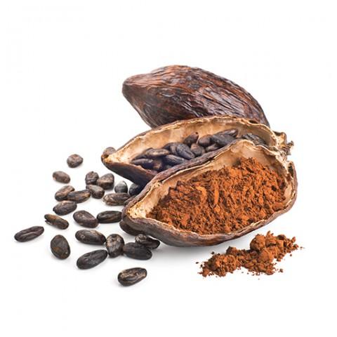 Kakao Genuss kalorienreduziert