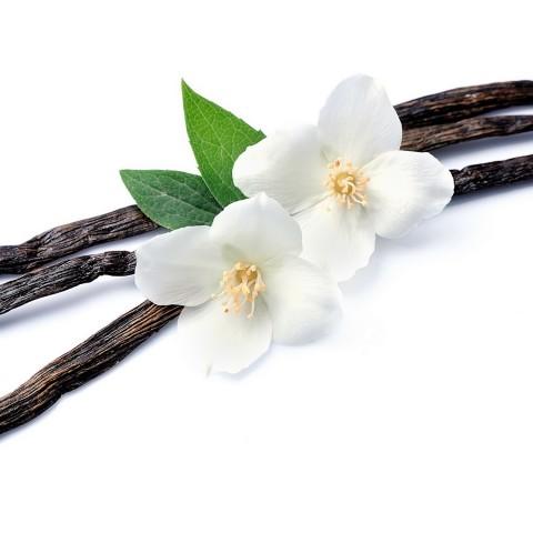 Vanille Genuss kalorienreduziert bio